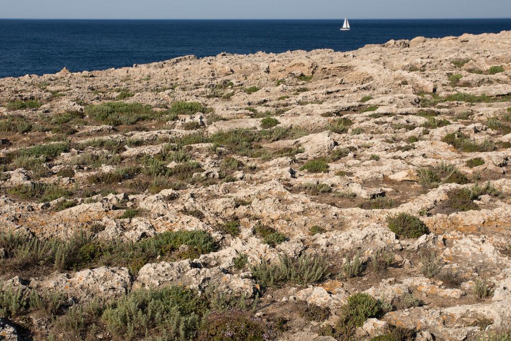 sailing_Menorca.jpg