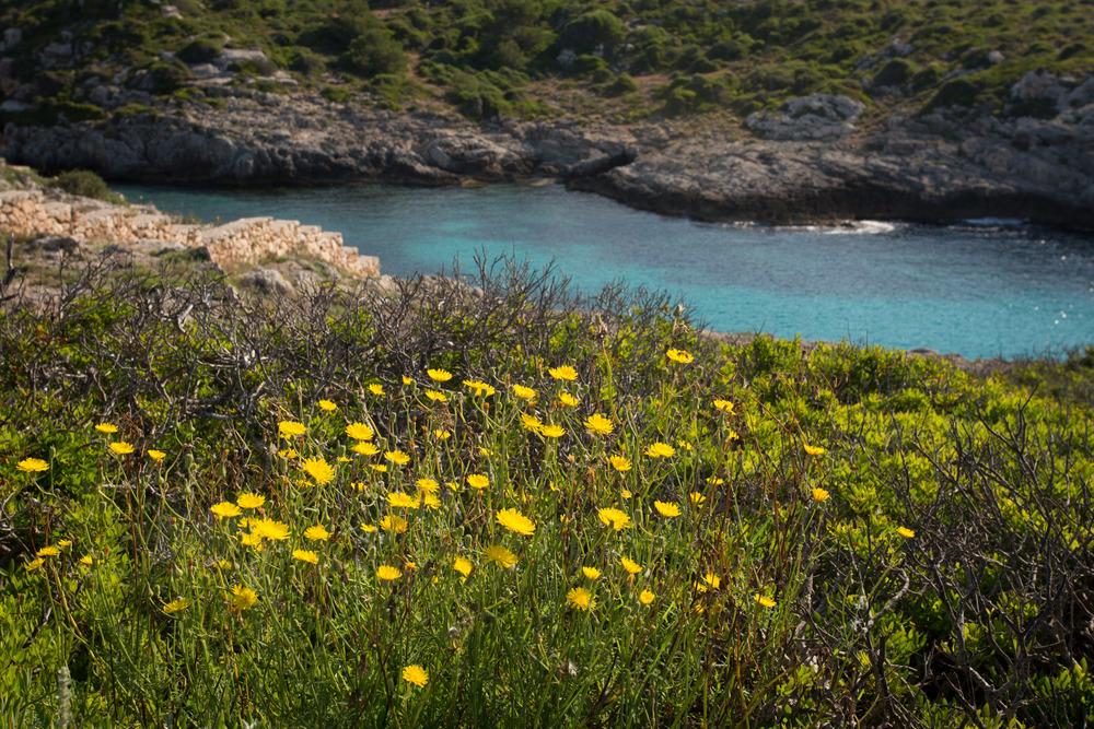 cove_Menorca.jpg