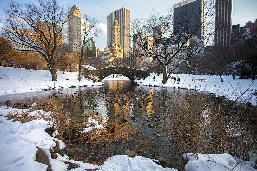 winter-nyc-snow_bridge_2014.jpg