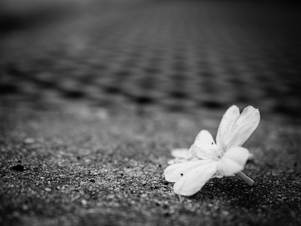 flower_grate