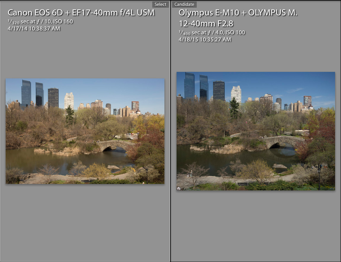 Full Frame Vs Micro 4 3 Revisited With Pro Olympus Lens