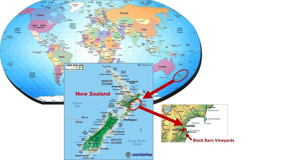 Map-World-NZ.jpg