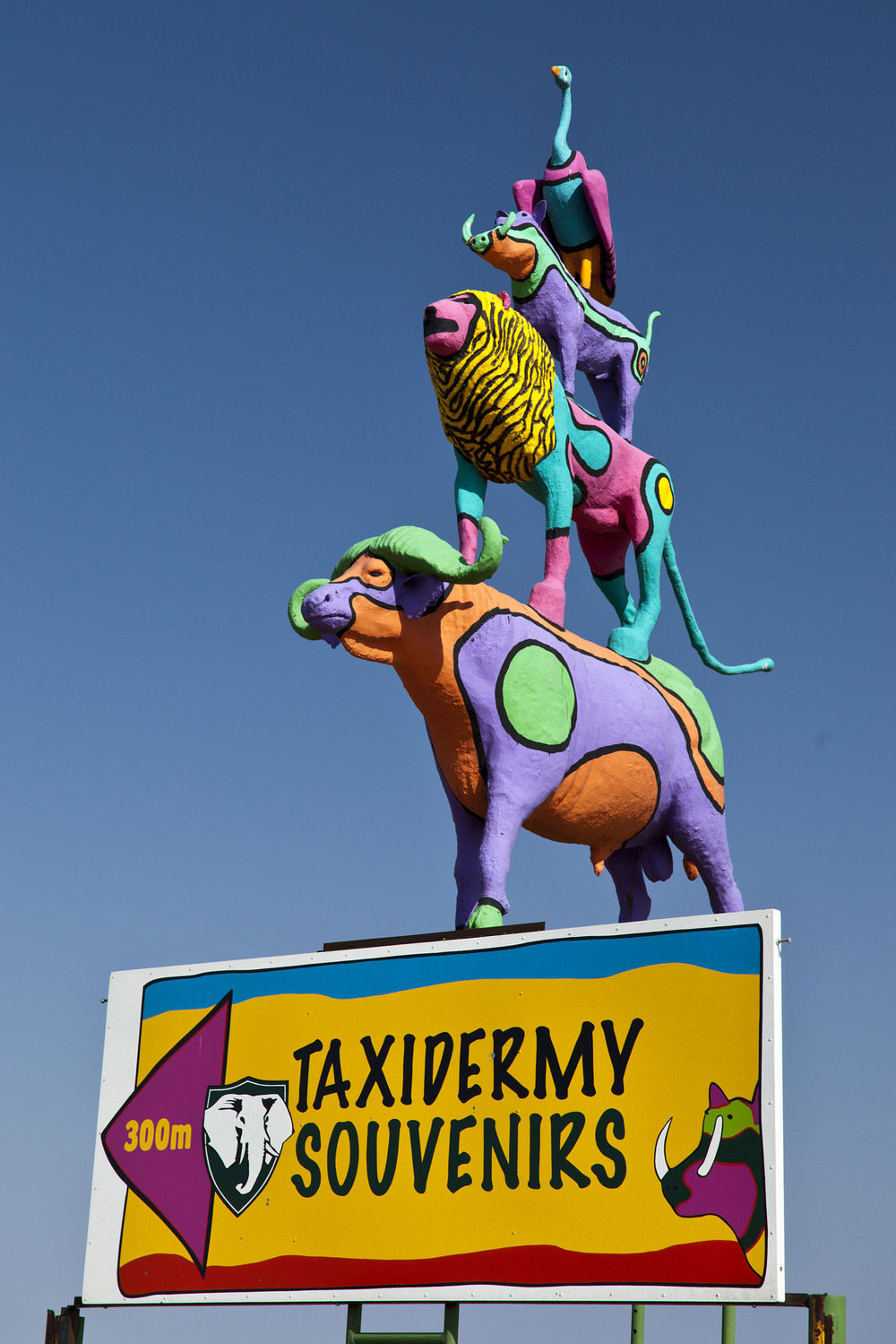 Taxidermy Souveniers - Windhoek
