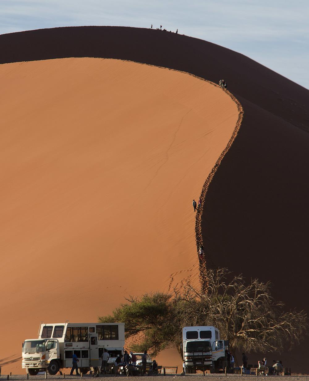 Dune #45