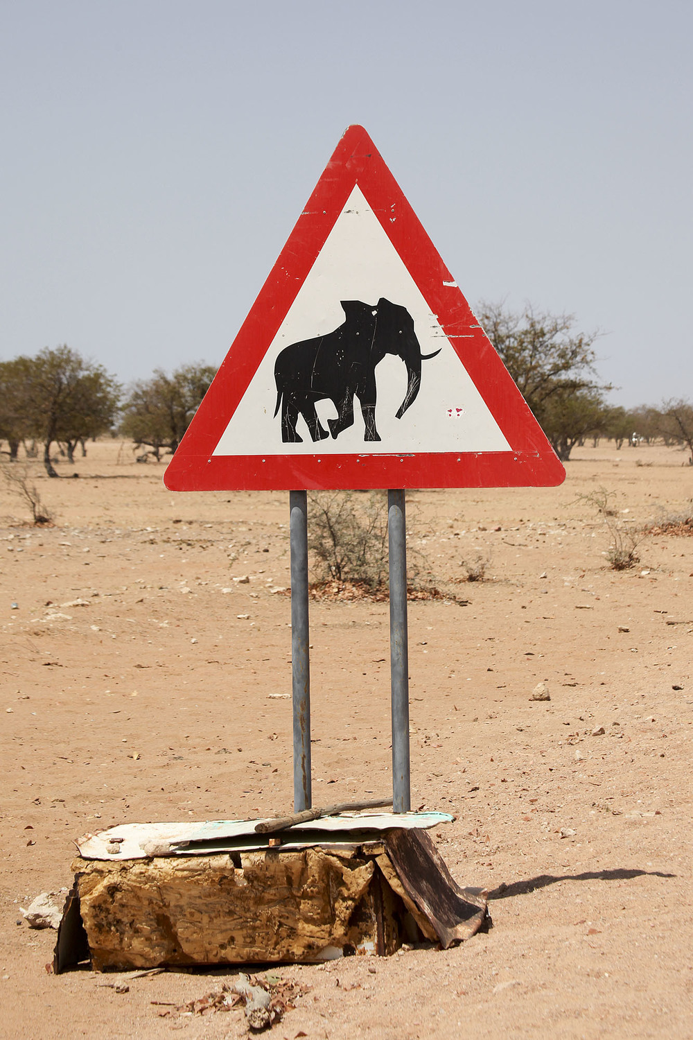 Watch out for Elephants