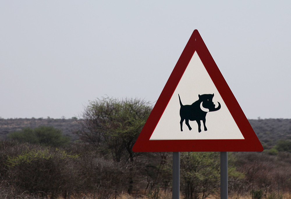 Warthog warning sign