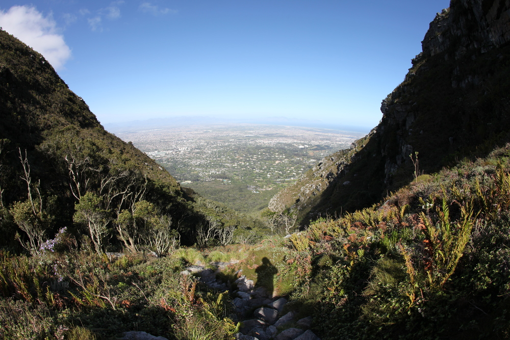 Looking down Skeleton Gorge to Kirstenbosch