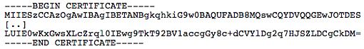 BASE64 Public Key Format