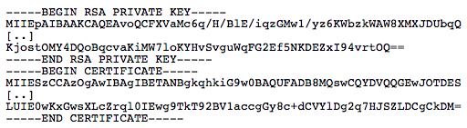 BASE64 Public and Private Key Format