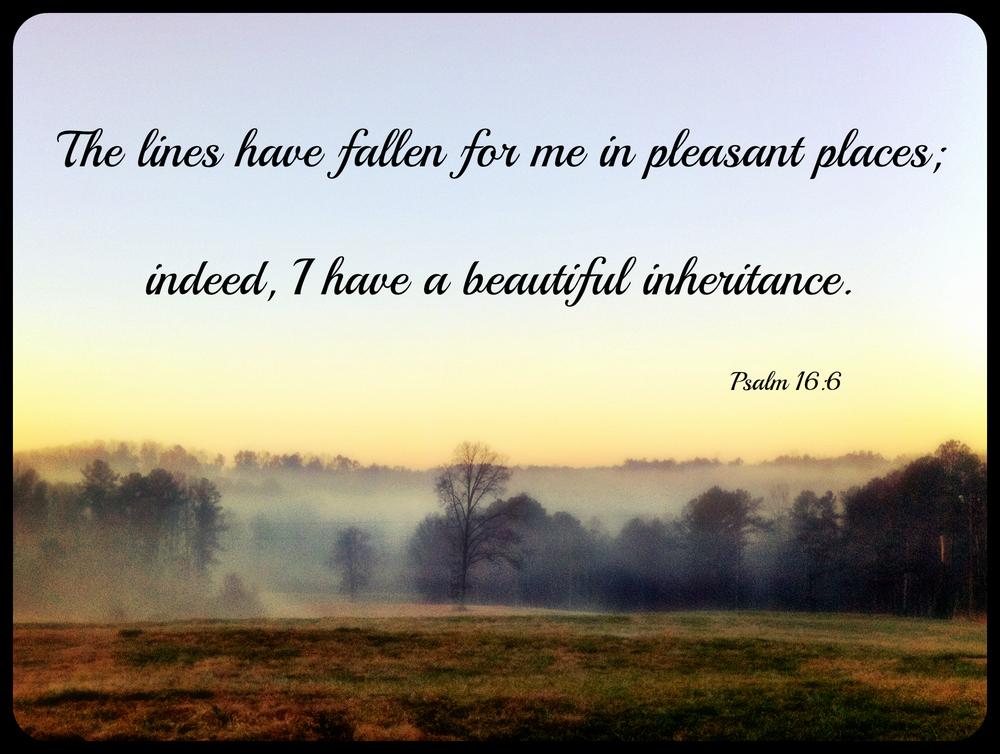 Sportweasel.com beautiful inheritance Psalm 16.jpg
