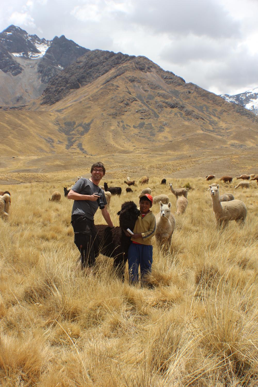 Перу, 2013