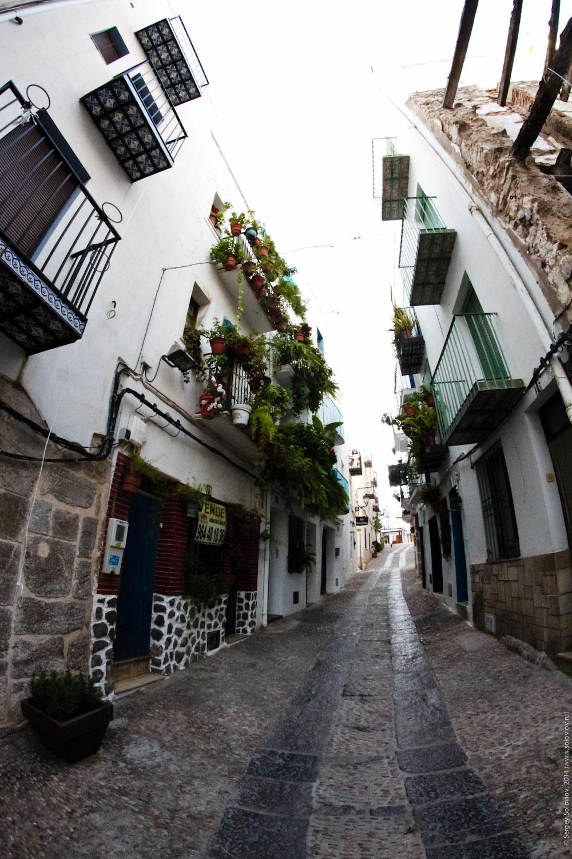Spain - 140109 - 128.jpg