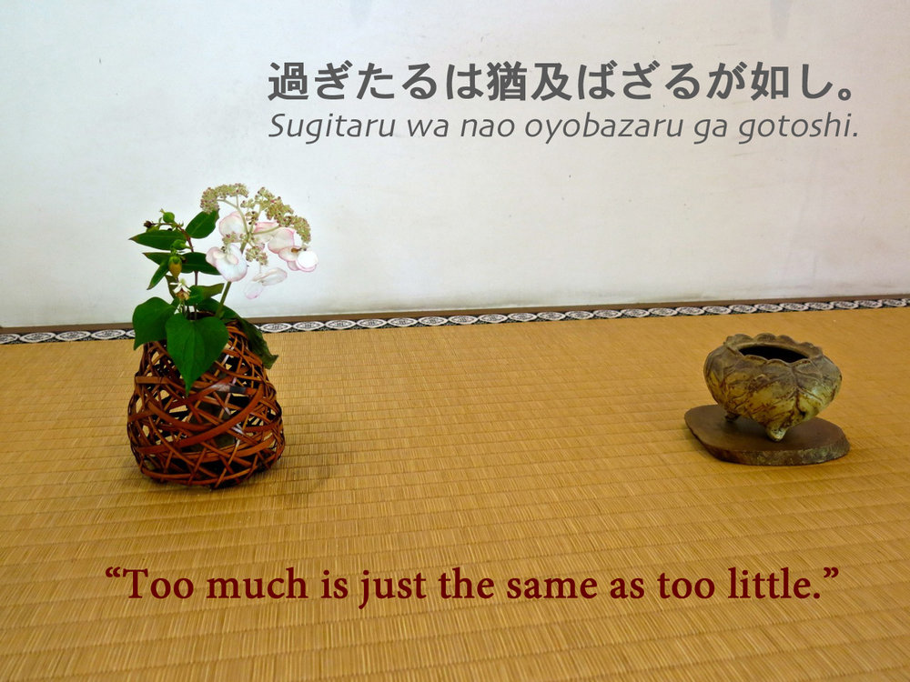 "Japanese Proverb: ""Too much is just the same as too little."""