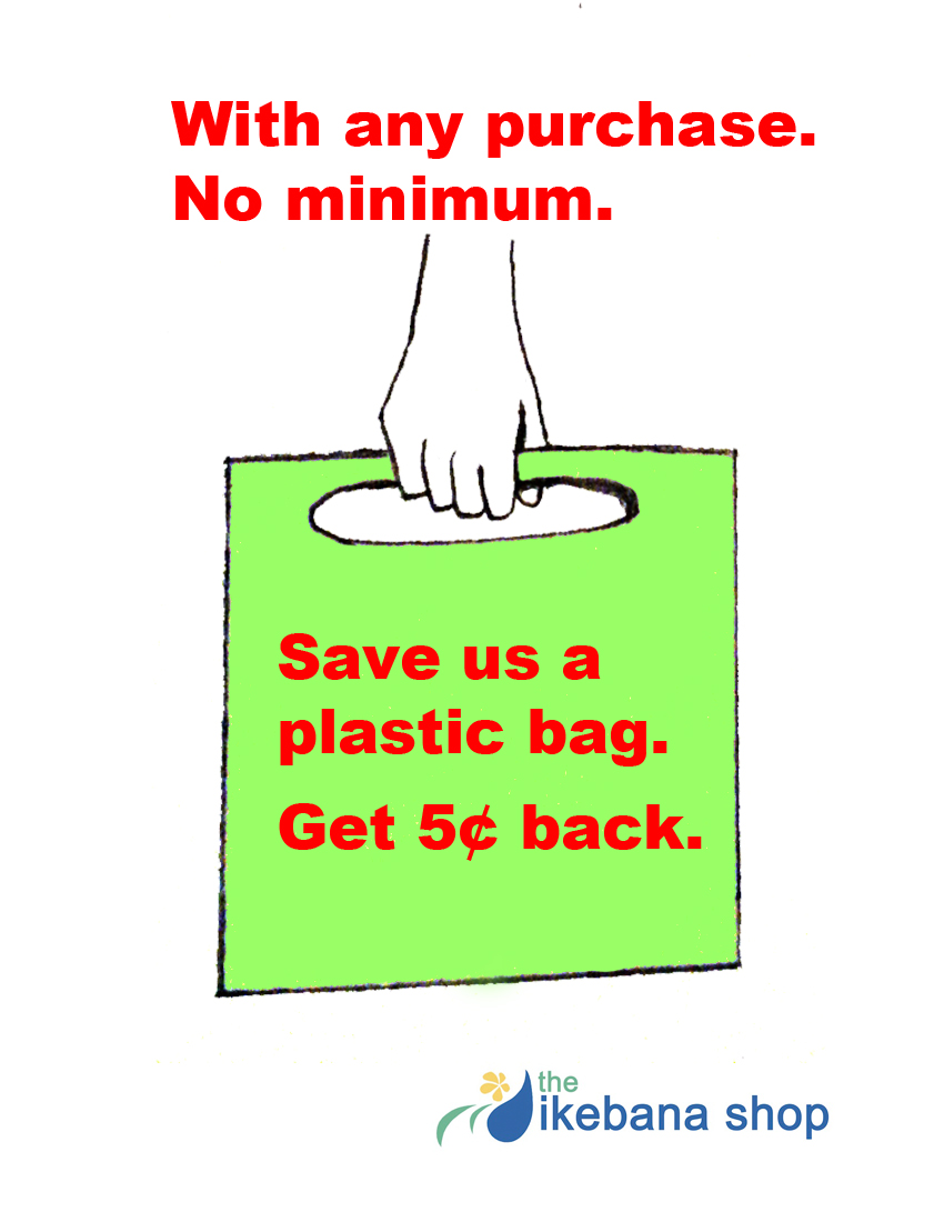 no bag discount_edited-2.jpg