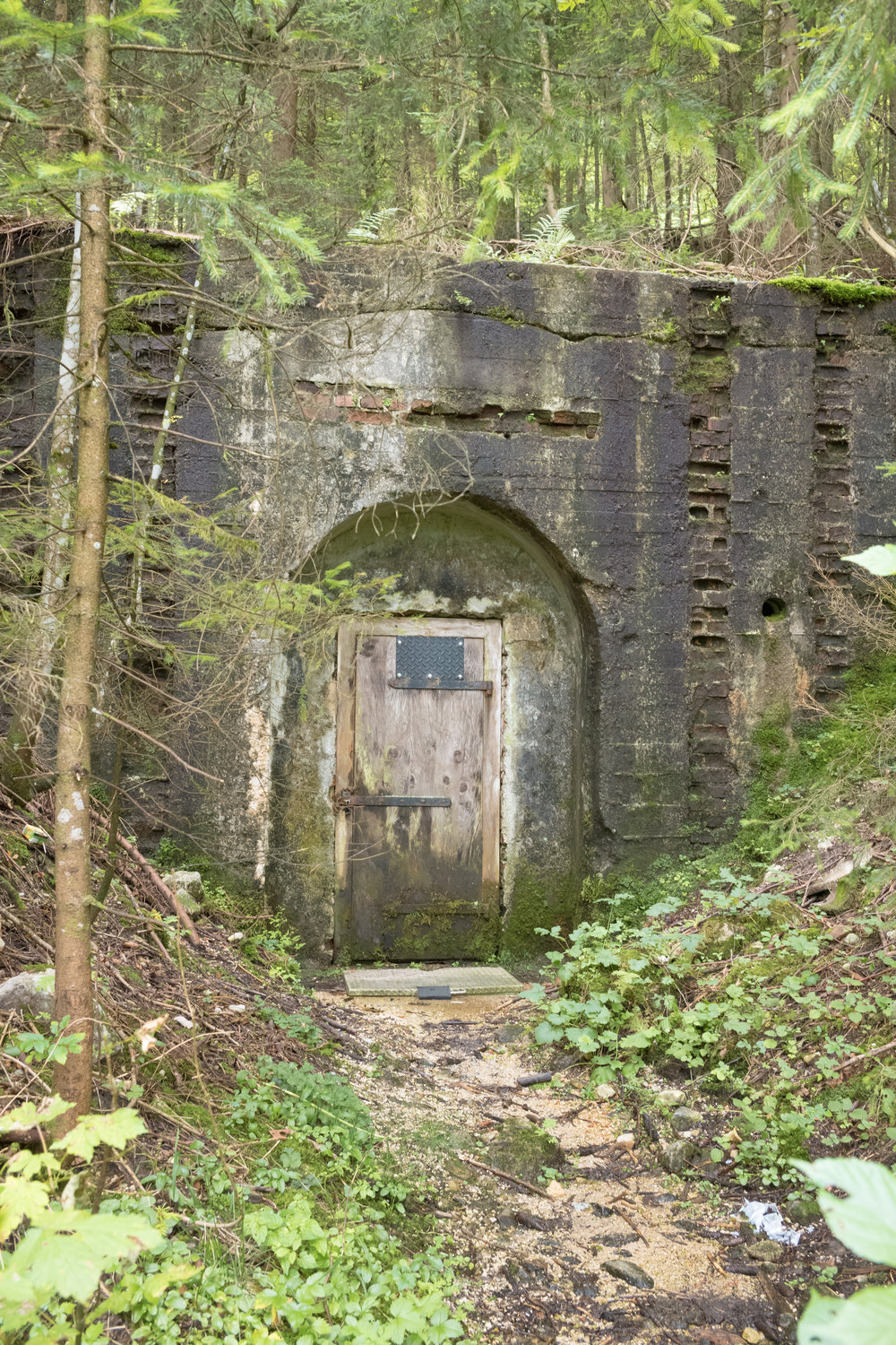 Obersalzburg, Germany, 2017  When we see something old, we can recognise it is a vestige of a previous time, but it's not alway clear what it tells us. A door leading into the side of a hill, lost in the trees. Its massive and substantial construction betray its importance, yet now, hidden away, its significance is gone. We might find out more about this place, but there will always be gaps to be filled by speculation and imagination.