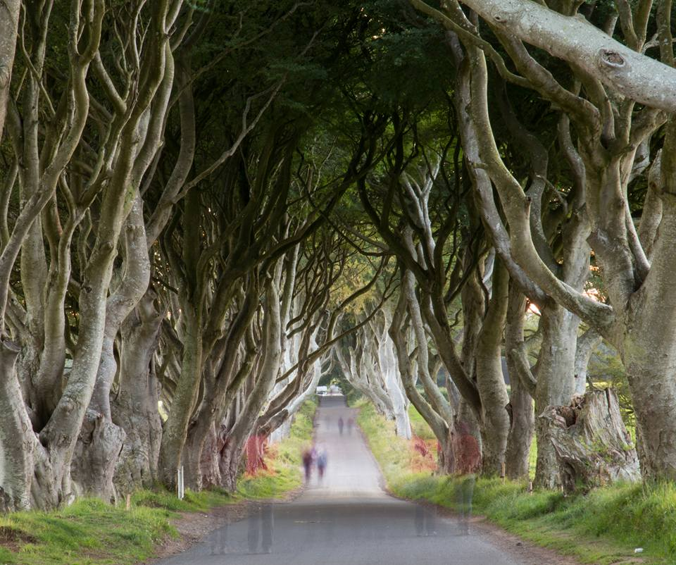 The Dark Hedges, Ghosts