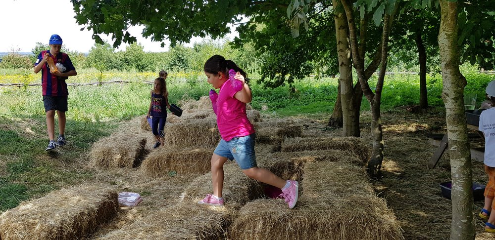 Straw bales play, every summer.