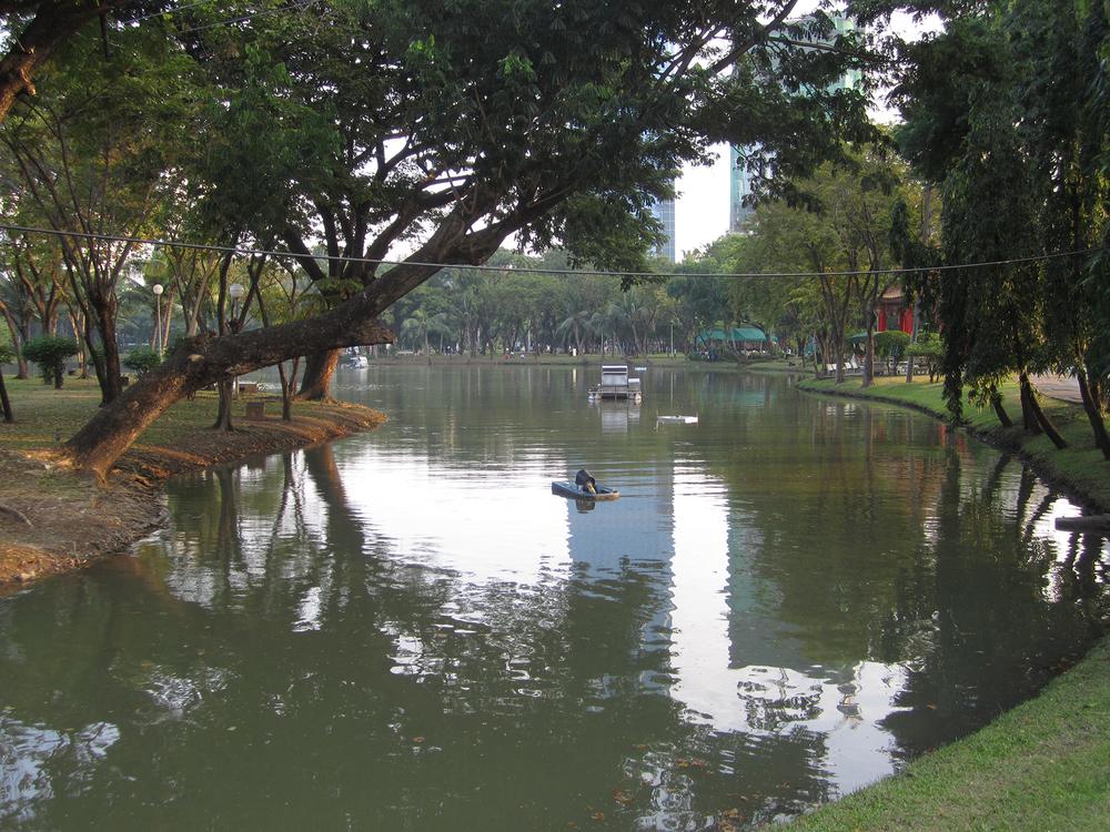 Original photo taken at Lumphini Park, Bangkok, Thailand