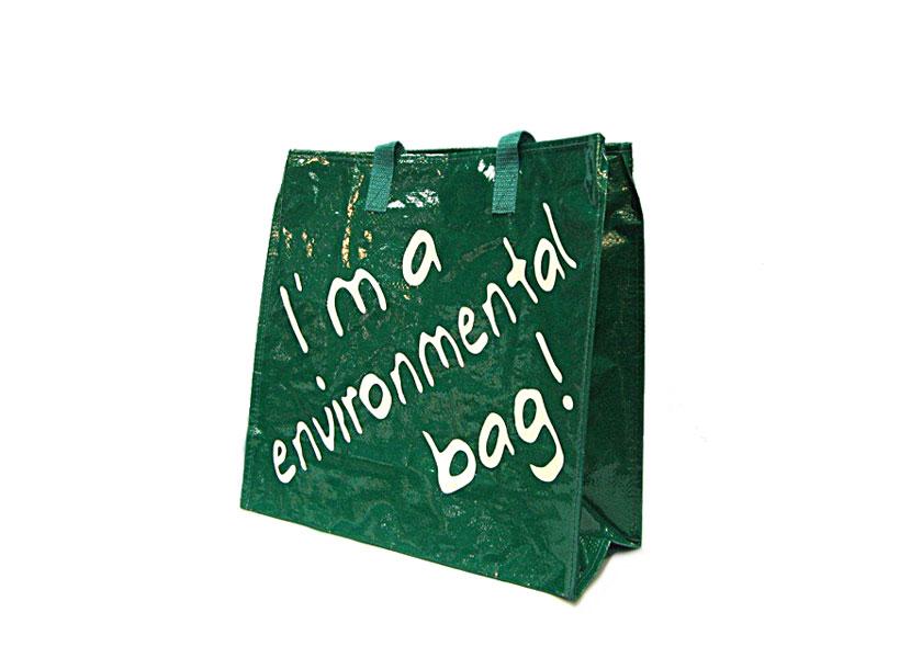 PP-environment.jpg