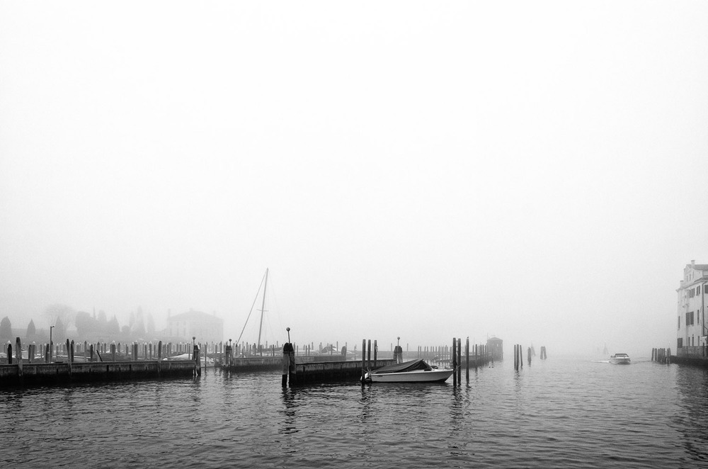 Winter Fog | Mark Lindsay