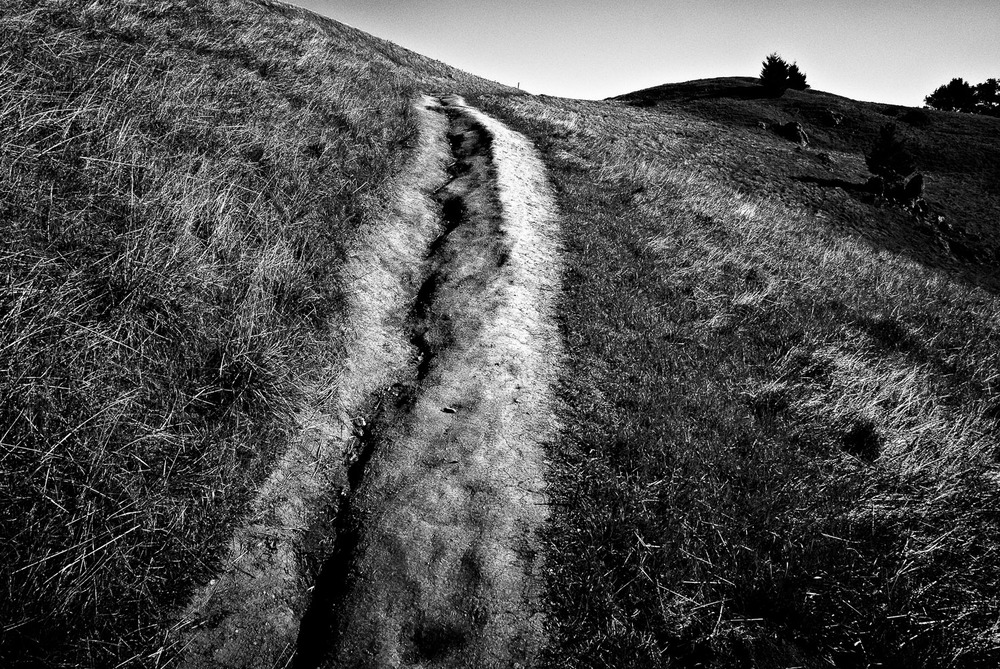 Path and Coastal Hills, Marin County | Mark Lindsay