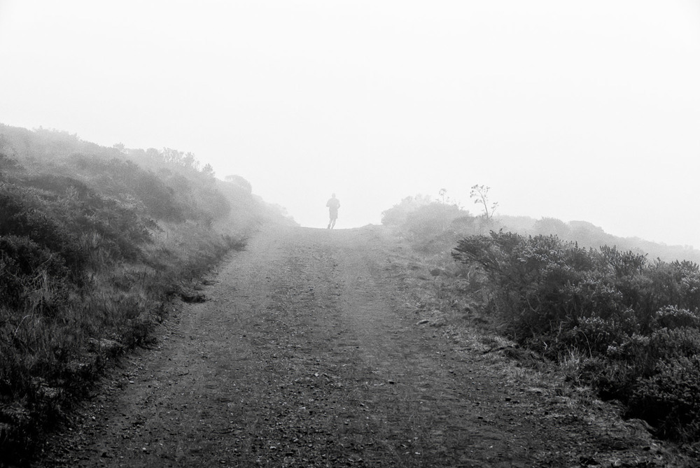 Runner and Fog | Mark Lindsay