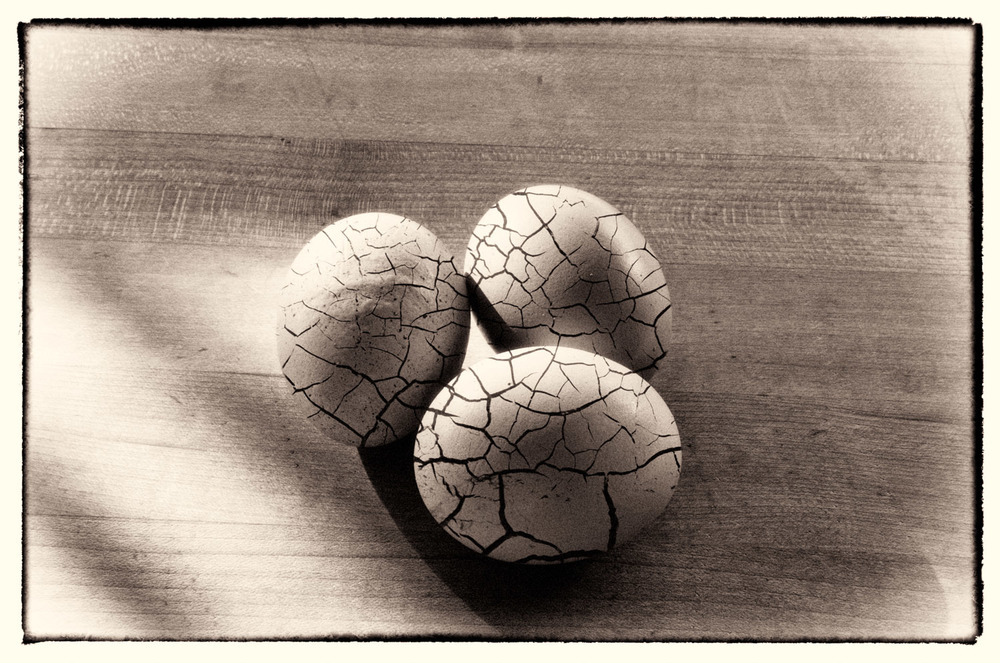Cracked Eggs | Mark Lindsay