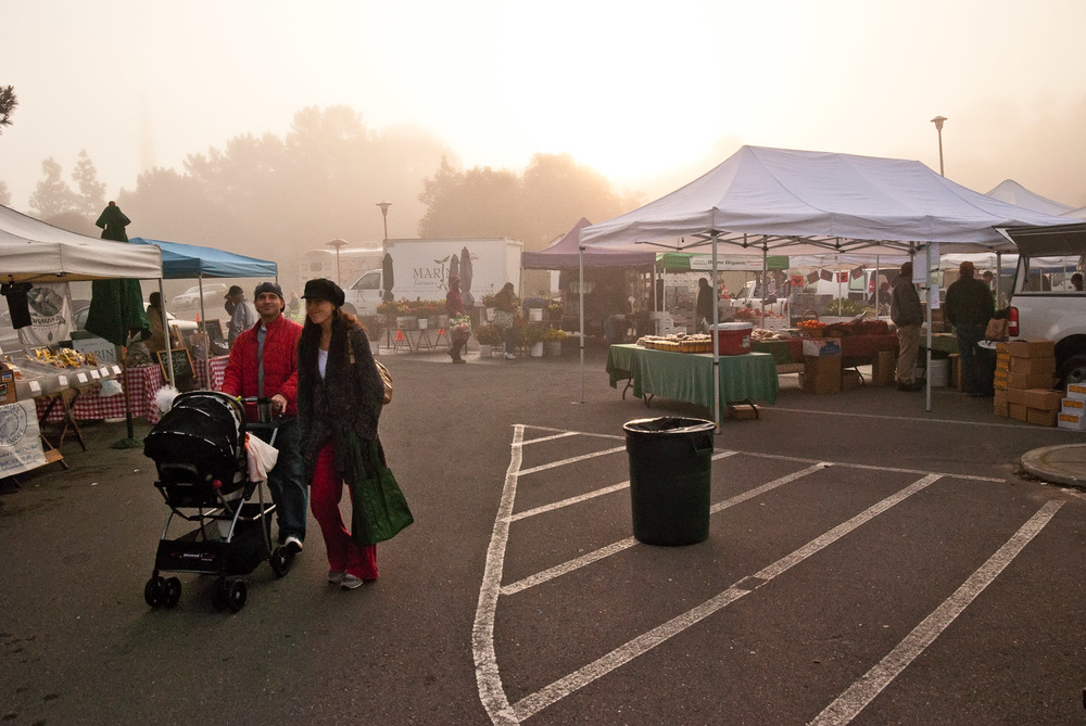 Fog and Family, Marin Farmer's Market | Mark Lindsay