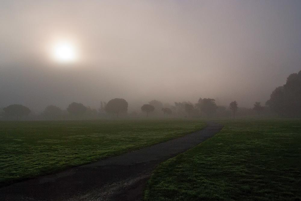 Town Park Fog | Mark Lindsay