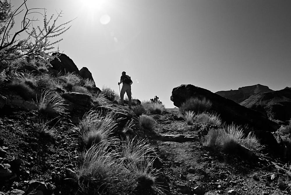 Into the Sun on Clear Creek   Mark Lindsay