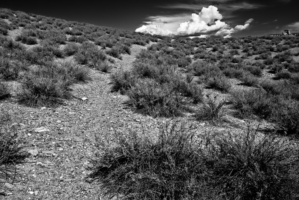 Tonto Trail with Cloud | Mark Lindsay
