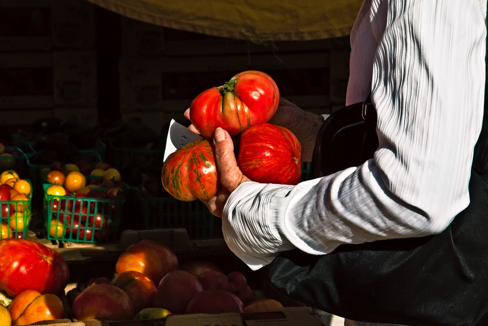 Tomatoes in Grasp | Mark Lindsay