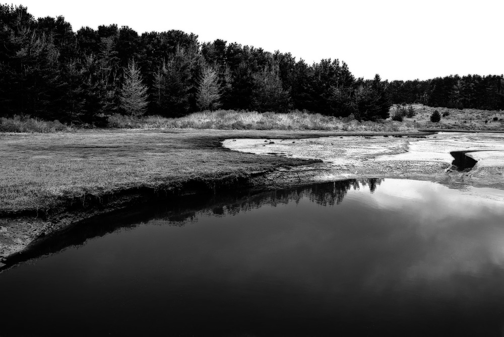 Shadows and Reflections, Pt. Reyes   Mark Lindsay