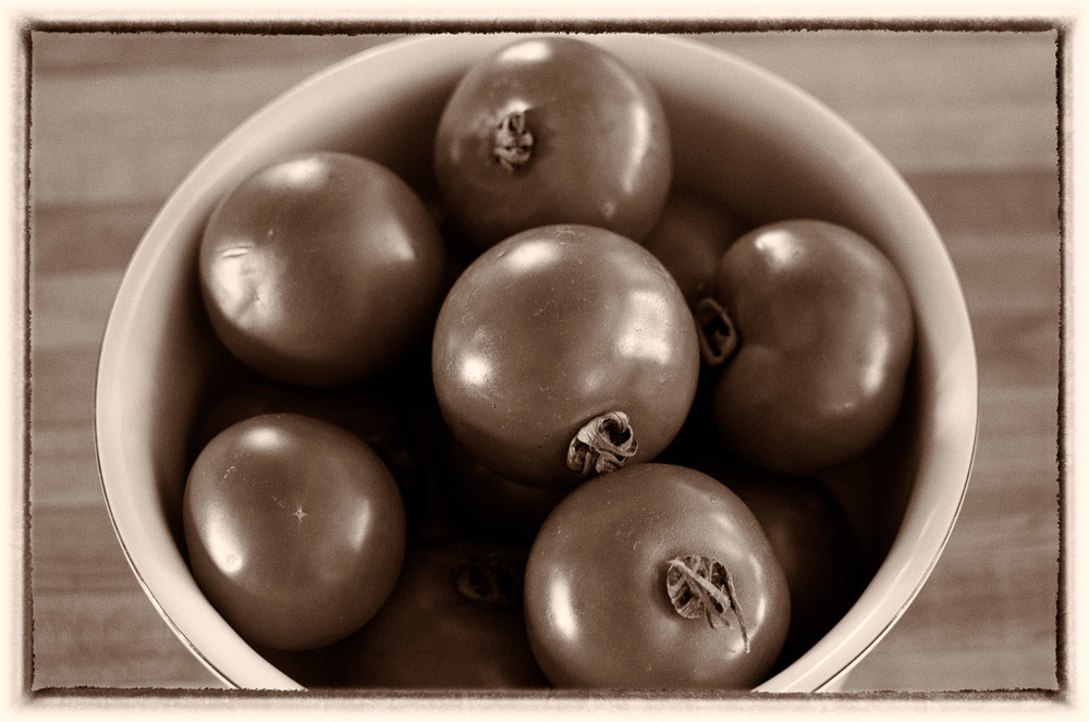 Summer Tomatoes | Mark Lindsay