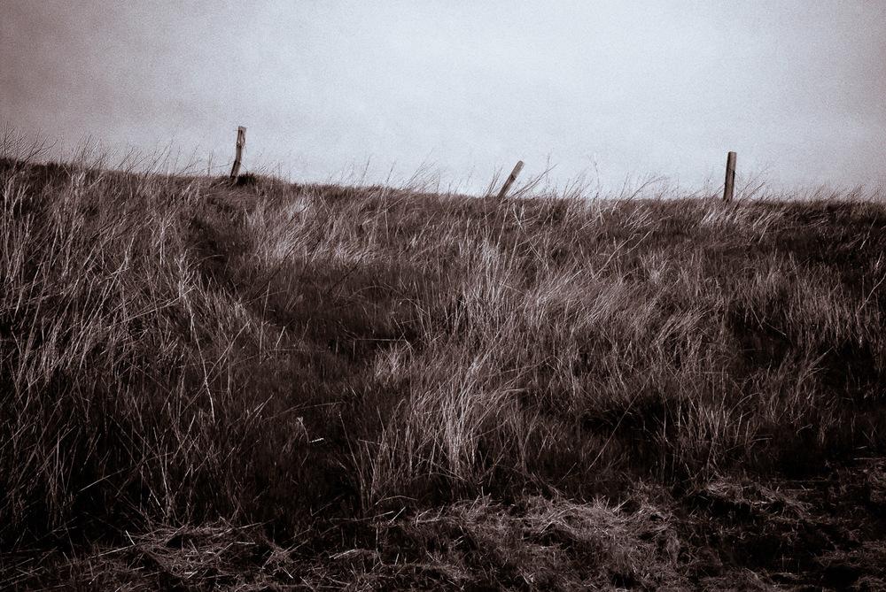 Untitled | Mark Lindsay