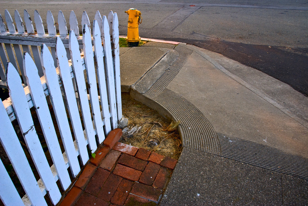 White Fence and Hydrant | Mark Lindsay