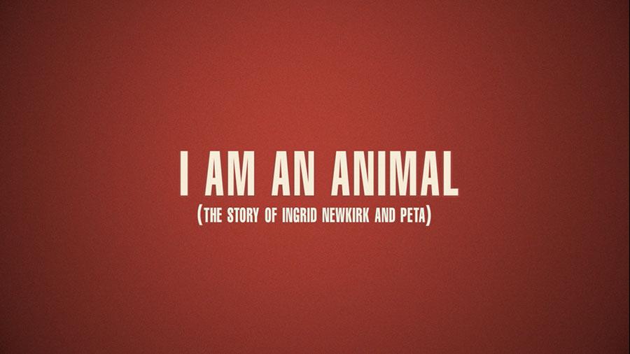 ANIMAL_01.jpg