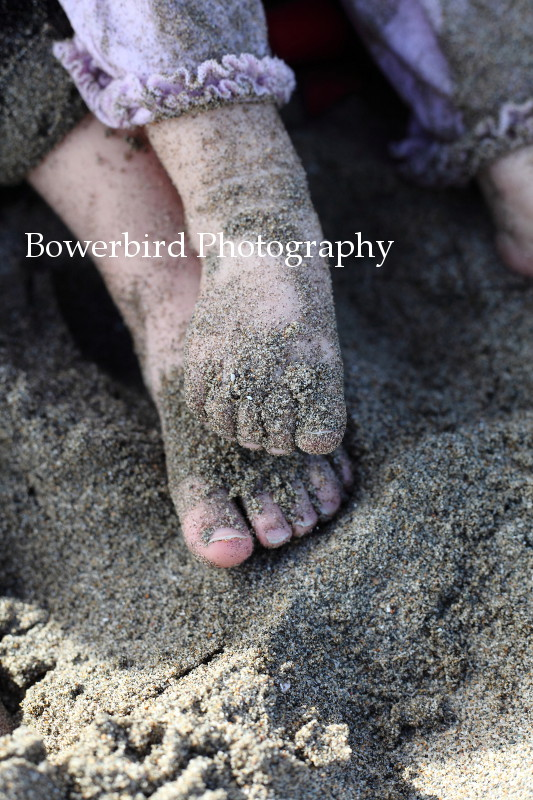 Baby feet! © Bowerbird Photography 2012; Family Photography at Crissy Field, San Francisco.