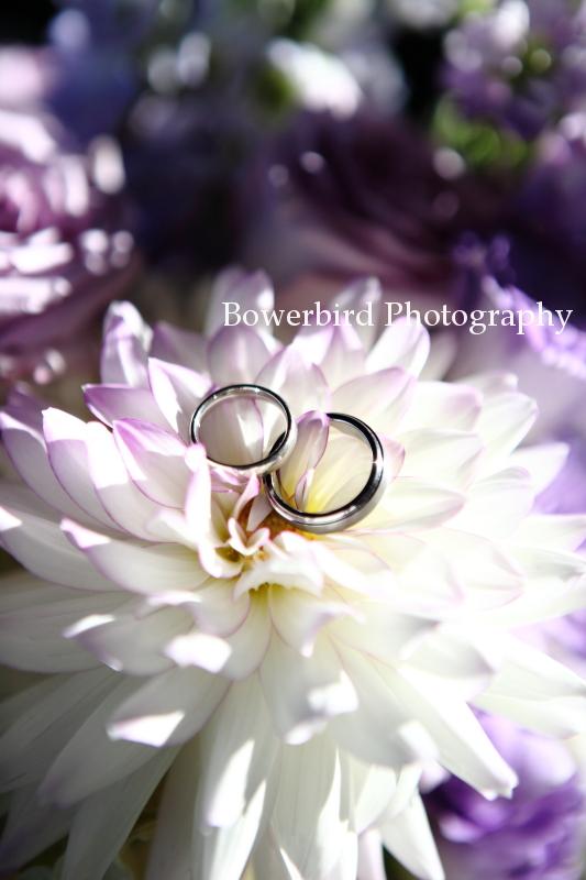 Wedding bling!© Bowerbird Photography 2012; Wedding Photography at Fogarty Vineyards, Woodside.