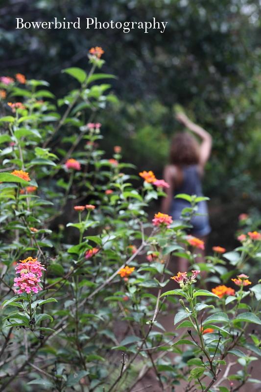 Hiking and picking wild fruits!
