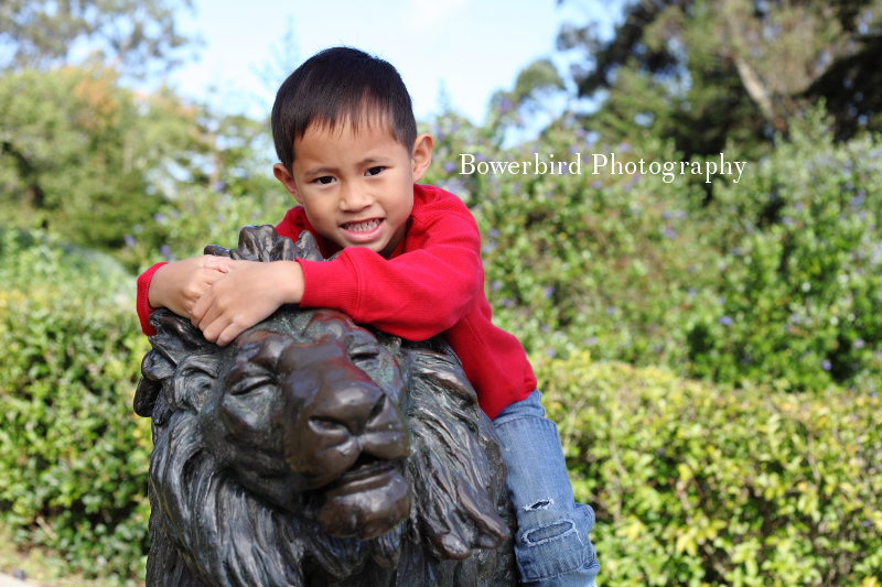 Purrrr....purrr  © Bowerbird Photography 2012; Family Photography in Golden Gate Park, San Francisco.