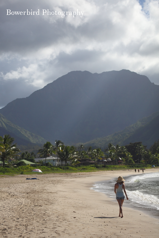 The North Shore and Hanalei Bay.© Bowerbird Photography 2012; Travel Photography Kauai, Hawaii.