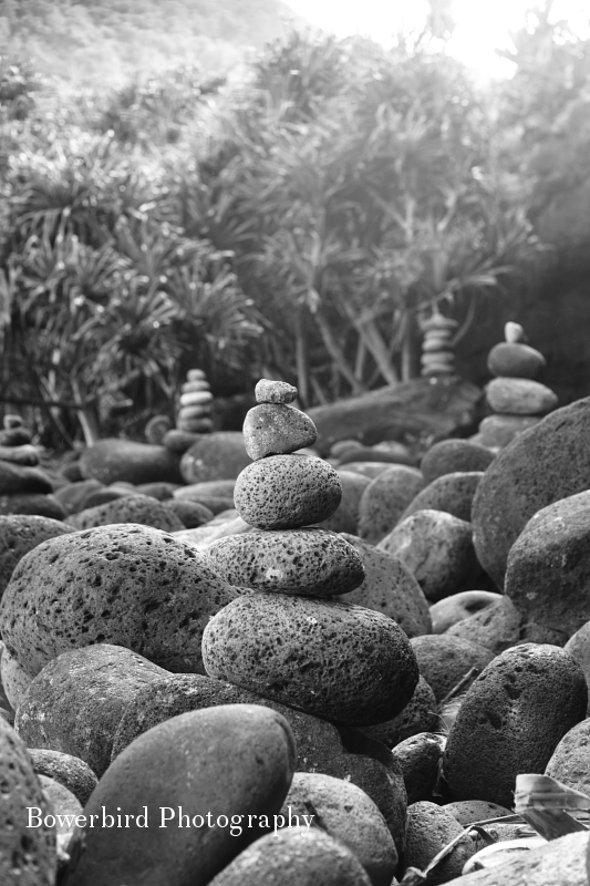 © Bowerbird Photography 2012; Travel Photography Kauai, Hawaii.