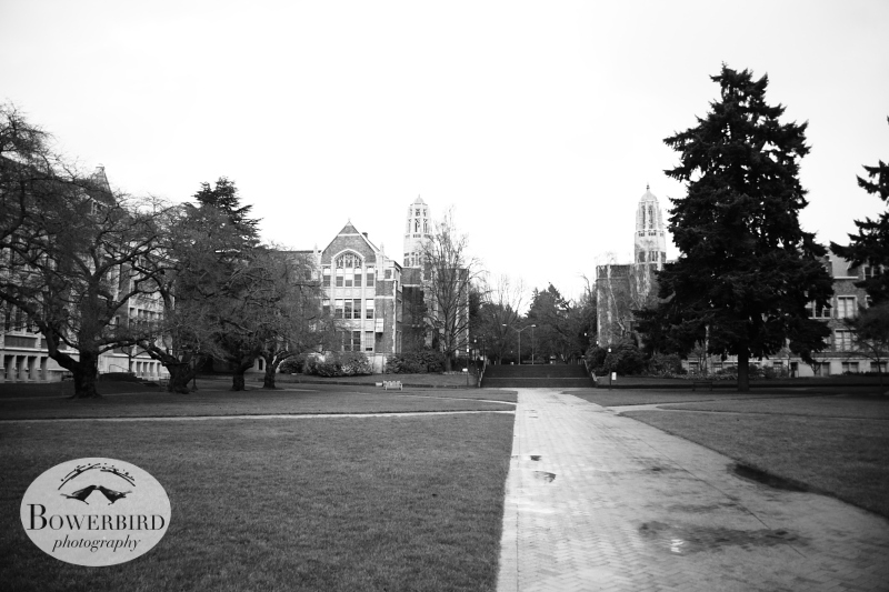 One of our favorite spots on campus, The Quad. © Bowerbird Photography 2013; Travel Photography, Seattle.