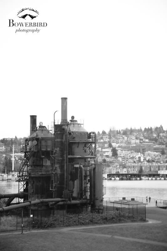 Gasworks Park. © Bowerbird Photography 2013; Travel Photography, Seattle.
