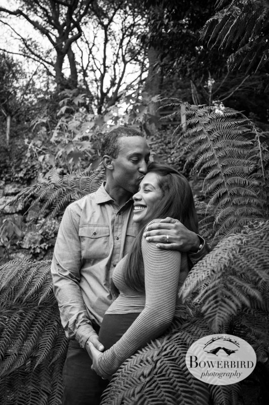 A kiss in the ferns. © Bowerbird Photography 2013; Maternity Photography at Lake Temescal, Oakland.