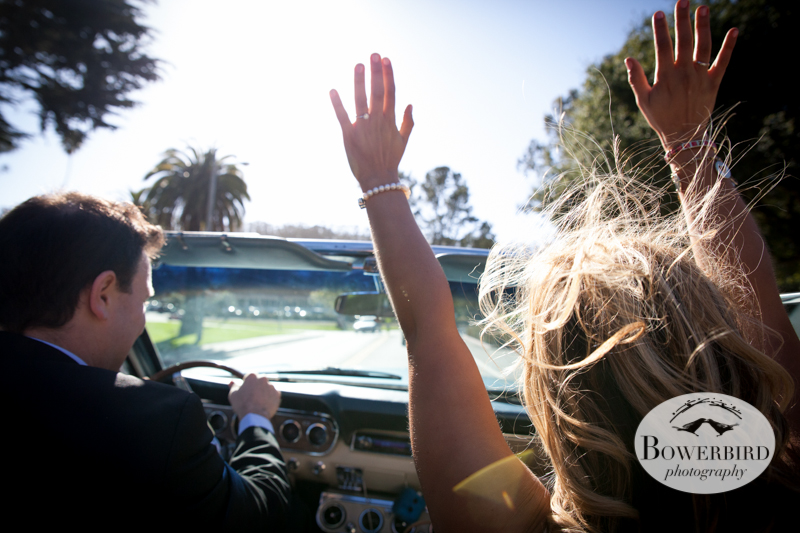 © Bowerbird Photography 2013; Engagement Photography with vintage 1966 Mustang convertible, San Francisco.