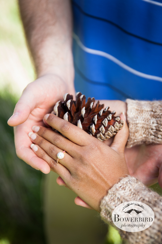 Natasia's beautiful engagement ring. © Bowerbird Photography 2013; Engagement Photography at Kirby Cove, Marin.