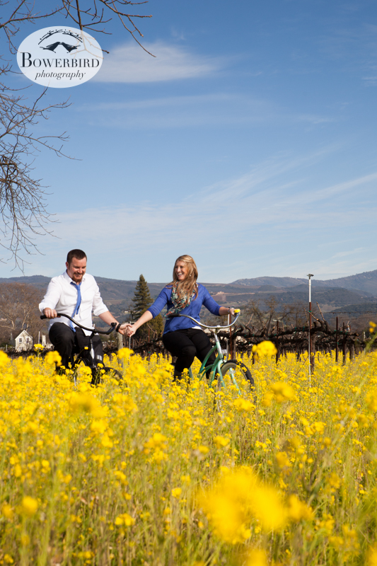 Hand-in-hand bike ride :) ©  Bowerbird Photography 2013; Engagement Photography in Napa Valley, CA.