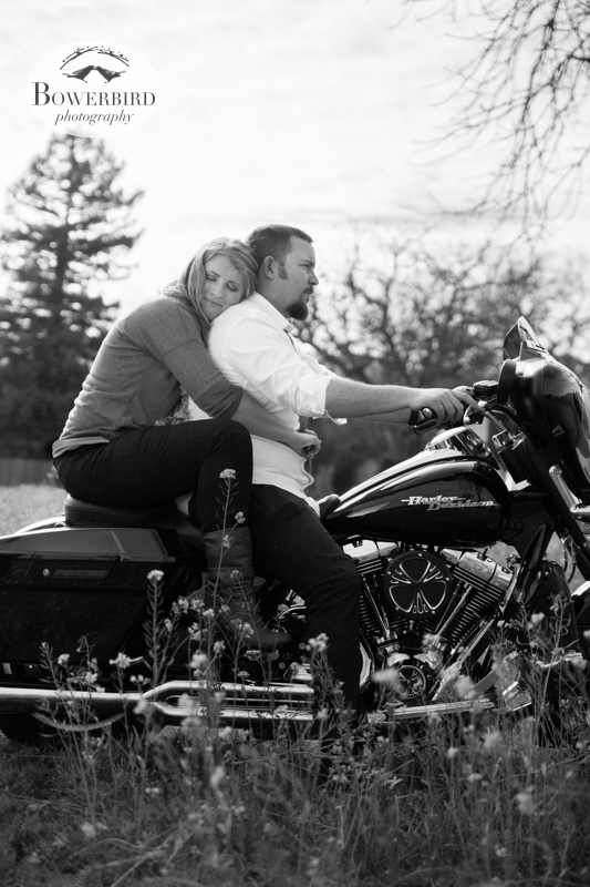 Riding on the Harley Davidson. ©  Bowerbird Photography 2013; Engagement Photography in Napa Valley, CA.